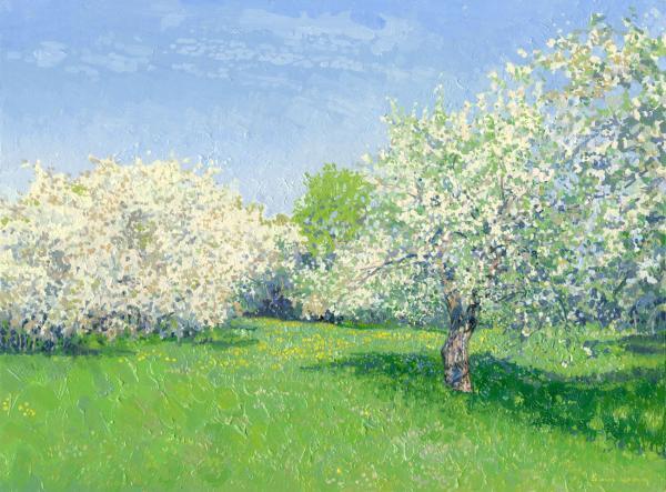 Сад в коломенском вишни и яблони