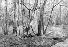 Simon Kozhin. Birches.