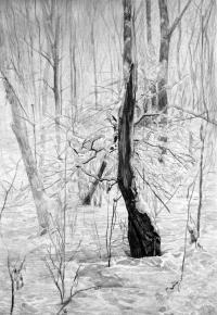 Simon Kozhin. Broken down wood.