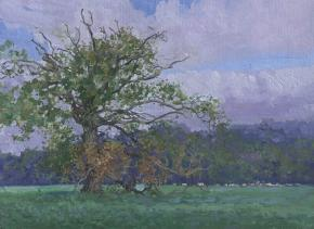 Simon Kozhin. Oak-Tree. Oxted.