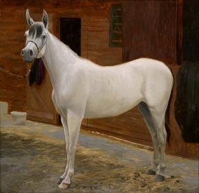 Семён Кожин. Белая лошадь.