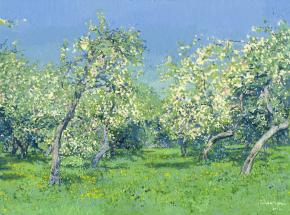 Simon Kozhin. Apple Trees in Blossom. Kolomenskoye. 2014 Oil on canvas on cardboard, oil. 30 x 40 cm.